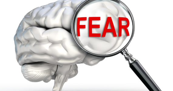 Taming Fear, the Little Word with a Big Voice